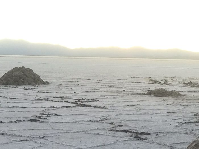 Salt lake White