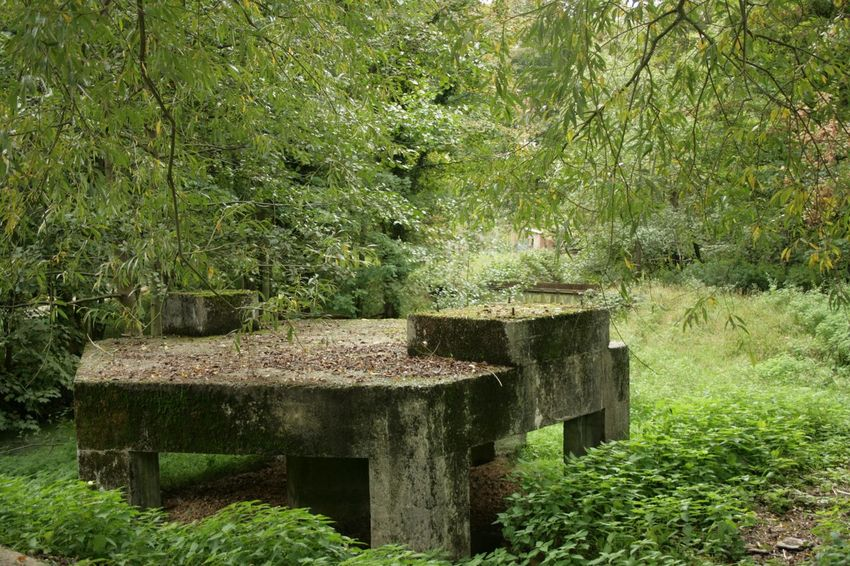 Environment Built Structure Abandonment No People Architecture Return To Nature Outdoors