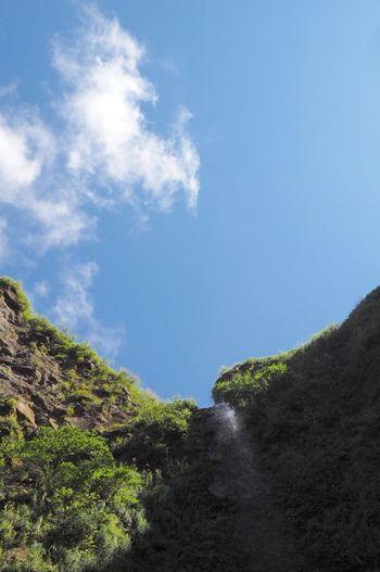 八丈島 唐滝 滝 Water Falls
