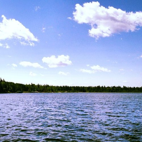 A peaceful day at the lake is sometimes the best medicine for a tired soul. SK  Travel Vacation Nature sky lake tree clouds cloudporn skylovers skypainters mothernature ladd00 canada explorecanada travelcanada prairielife prairies prairieskies landoflivingskies Saskatchewan sask exploresask