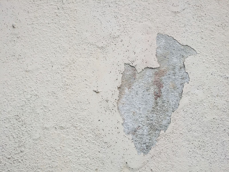 Image of building or wall with a defect .A peeling paint Architecture Building Coat Damaged Defect House Maintenance Moss Paint Peeling Peeling Off Peeling Paint Repair Structure Termite Wall Weather