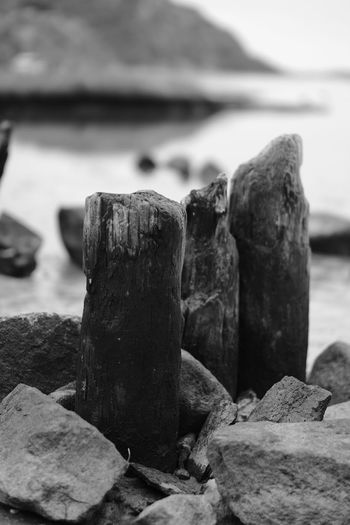 Down by the beach Close-up No People Nature Rock Rock - Object Outdoors Wood - Material Tranquil Scene Beach Wood Taking Photos Fujifilm X-H1 Sotenäs Eyeem Sweden Tranquility Sweden Sverige Fujifilm Strand Stenar Träbitar Acros_r Blackandwhite November 2018 Svartvitt