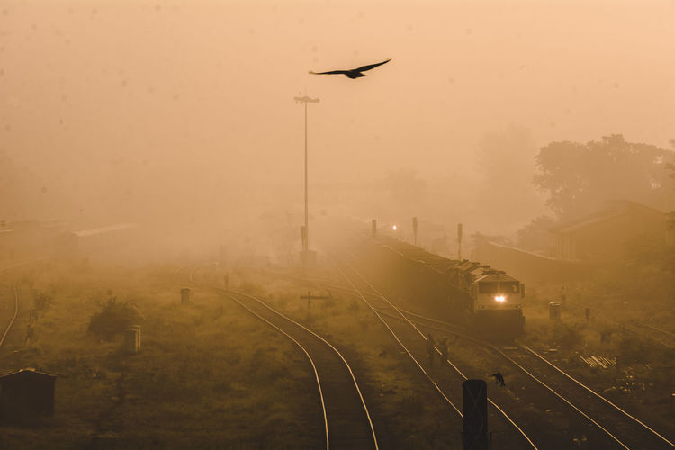 A bird  flying over railroad tracks against sky during sunset