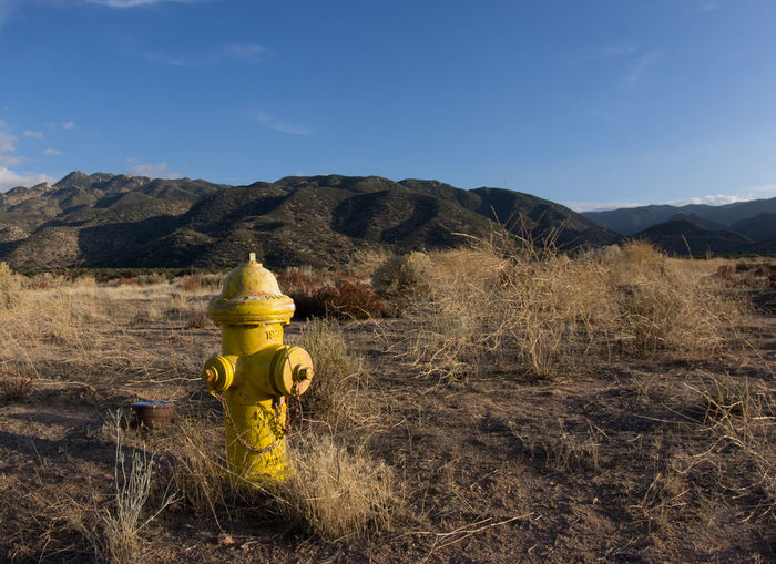 Yellow Fire Hydrant On Field