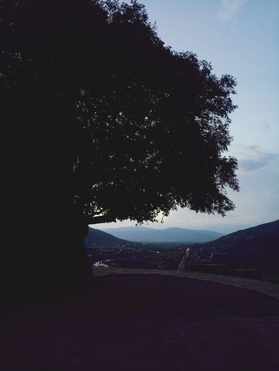 Georgia Mtskheta Jvari Monastery Mtkvari River Tree Sunset Biutiful Day Nature No People Sky First Eyeem Photo