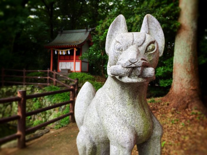 Shrine Japanese Shrine Inari Inari Shrine Guardian Lion-dog At Shinto Shrine Fox Stone Statue