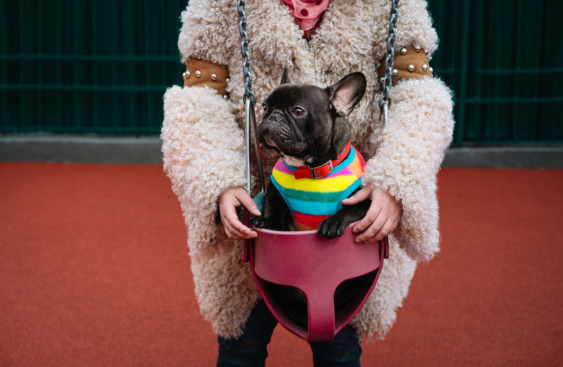 Portrait of woman holding small french bulldog dog in swing