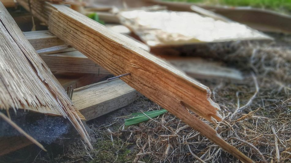 Chopped Wood In The Forest Chopped Woods Chopped Woods Splinters Of Reality Timberland Woods On The Ground Woodstock Focus Focus On Foreground Splint Splinter Splintered Wood Splinteredwood Timber Wood - Material Wooden Posts Woods
