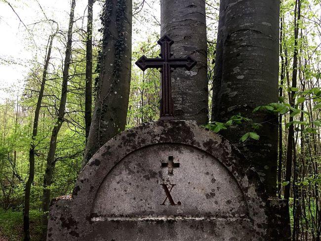 Statue Wald Glaube Und Religion Kreuze Denkmal Hoffnung Vergebung Vergeben Stein Bäume Christentum Kreuzigung Jesus Waldspaziergang