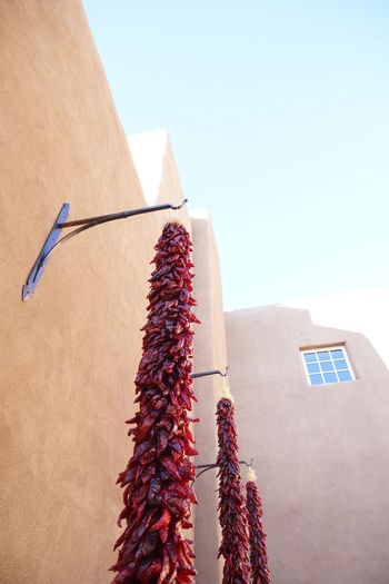 Low angle view of decorated hanging against wall