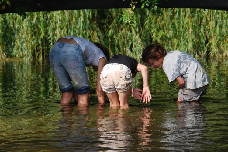 Fishing together summer holidays Water Three People Childhood Lake Standing Boys Father Nature Day Child Togetherness Real People Girls Outdoors Discovery Full Length Ankle Deep In Water People Trout River Fishing Summertime Mottisfont Abbey Hampshire, UK