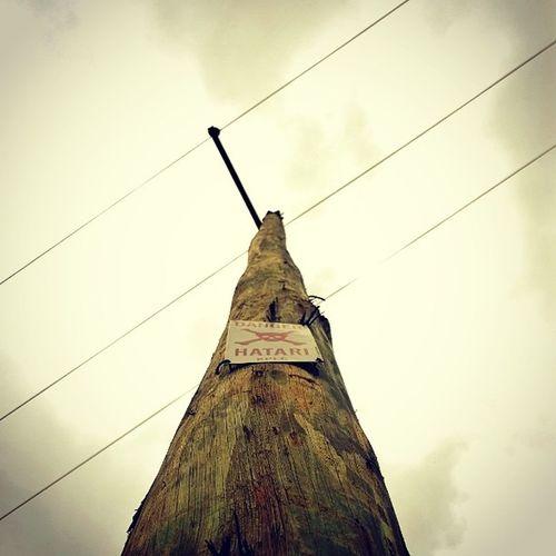 ? Danger Hatari Electricpoll Kplc powerline Kenya cloudy sky looking up webstagram wood