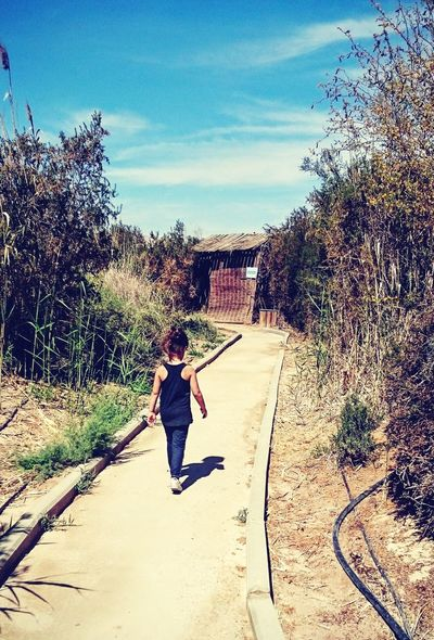 Girl Walk Lonely Sentier Nature Symplicity