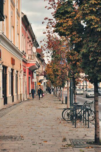 People walking on sidewalk in city during autumn