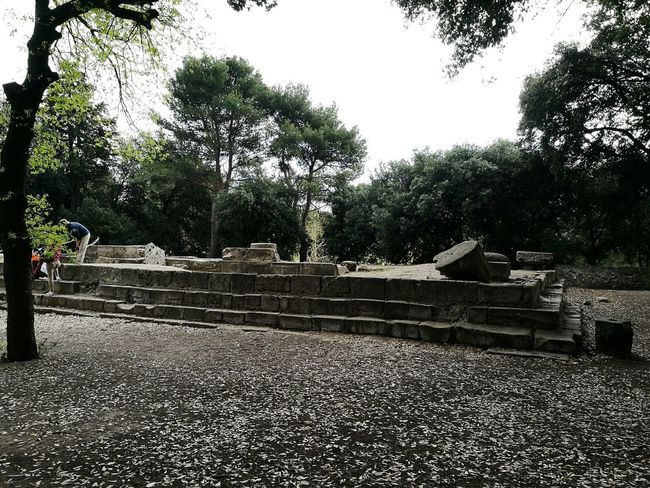 Tree Outdoors No People Day Sky Nature Ruins Architecture Ruins Scavipompei Scavi ScaviDiPompei Pompeii  Pompeii Ruins Pompeiscavi Pompéi Green Mycity Travel