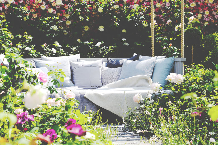 Beauty In Nature Blooming Blossom Botany Cozy Place Day Flower Flower Head Fragility Freshness Garden Gardenfurniture Green Color Growing Growth In Bloom Nature No People Outdoors Petal Plant Sofa Tranquility White White Color