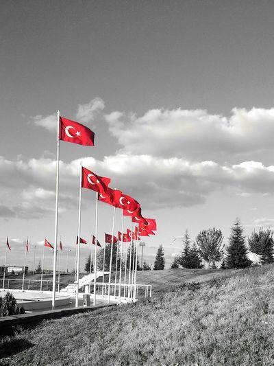 Turkey Türkiye Turkey ♡ Turkishflag Love My Flag  Flags Turkishflags