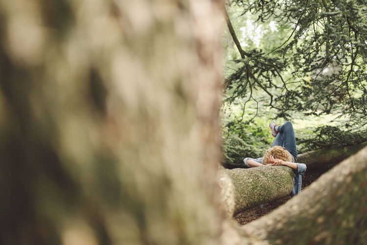 Woman lying on tree trunk seen through branches