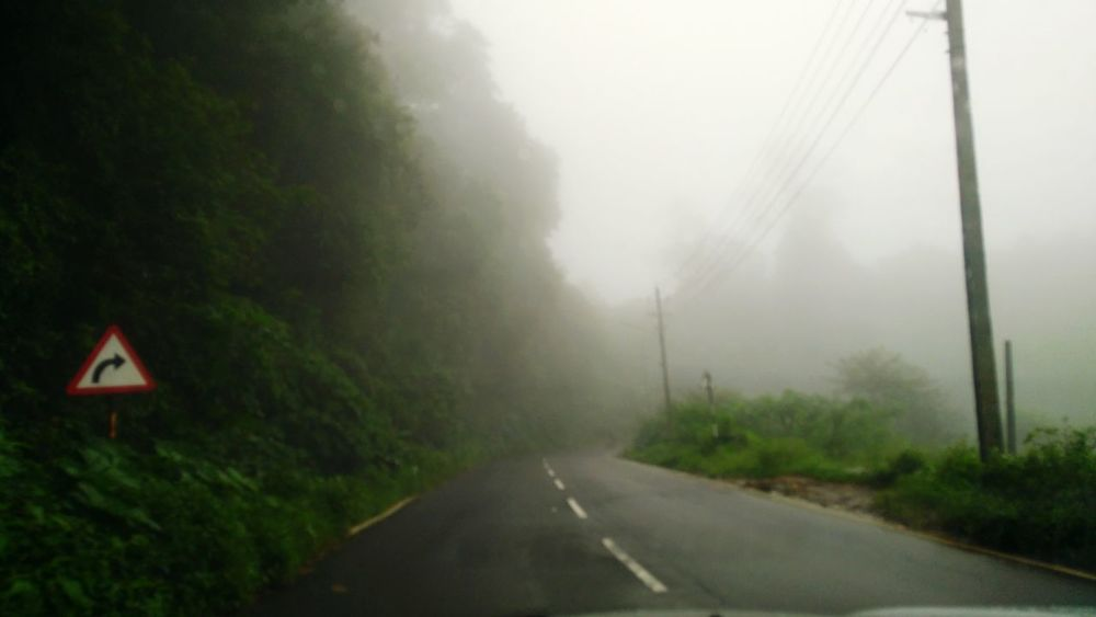 Fog Tree Road Weather Danger Outdoors No People Nature Road Sign Day Thunderstorm Sky Hurricane - Storm Shades Of Winter