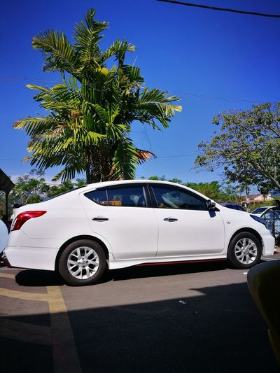 Clear And Bright Sky Nissan Almera Car Transportation Luxury Day No People Palm Tree Tree