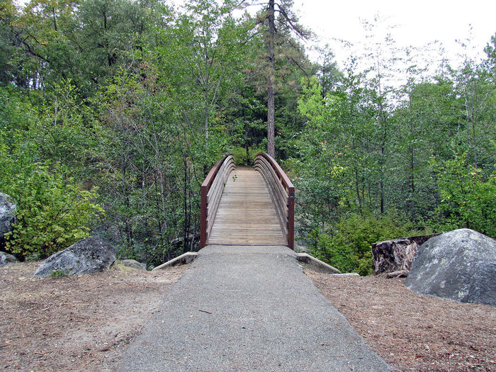 The Bridge Absence Ancient Civilization Bench Brandy Creek Falls Composition Diminishing Perspective Empty Footpath Leading Long Narrow Northern California Old Shasta Outdoors Park Perspective Railing Road Shadow The Way Forward Tree Tree Trunk Walkway Whiskeytown National Park