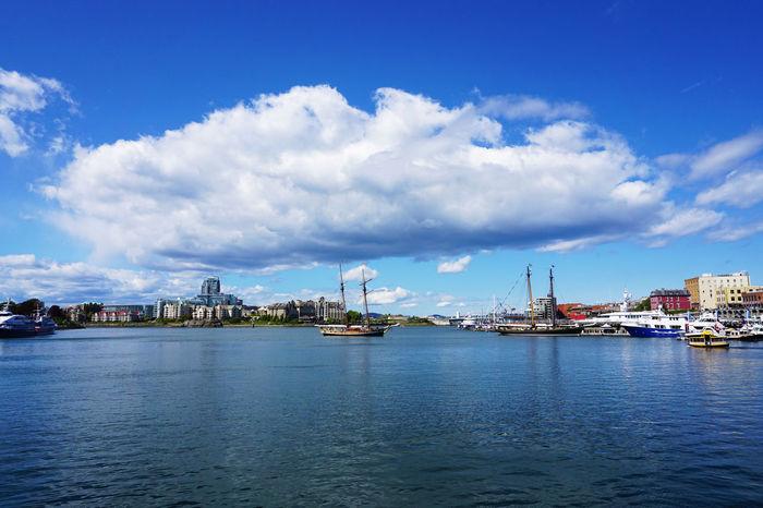 2016 Canada Cloud Cloud - Sky Cruise Harbor Port Sea Ship Sky Vancouver Victoria Victoria Harbour Water Wharf カナダ バンクーバー ビクトリア Sailboat Waterfront Marina Inner Harbor