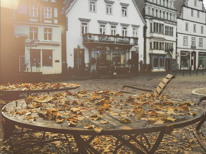 Streetphotography Streetart Fall Leaves Falllove Fall Autumn Autumn Colors Fall Beauty in Bad Salzuflen