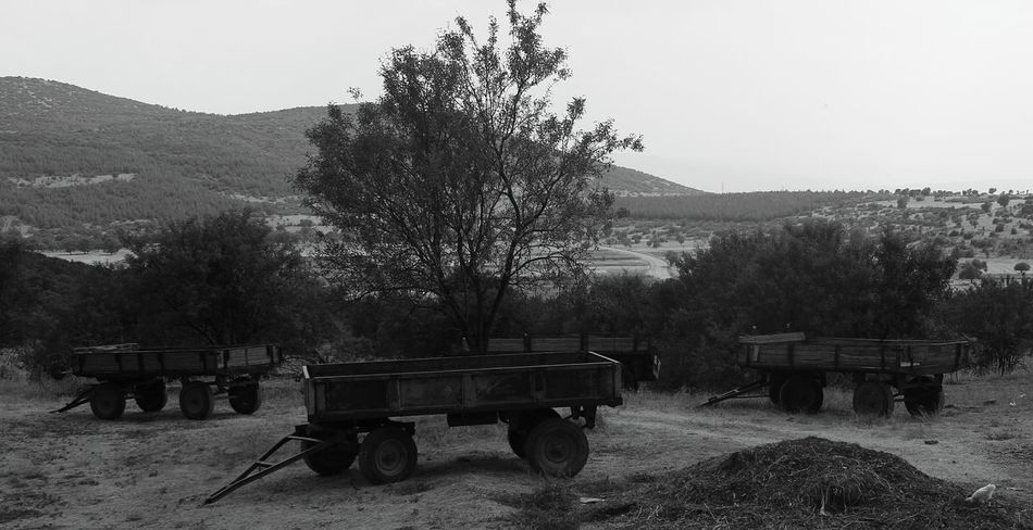 IShots Amateur Amateurphotography Shoting Fotomachine EyeEm Gallery Sırçalık Siyah Blackandwhitephotography Transportation Fotografia Sultan Yolculuk EyeEm Best Shots - Black + White Monochrome Photography