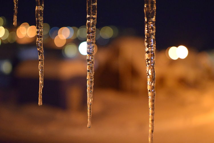 Icicles Bokeh Background cold Cold Temperature Greenland Ice Icetap Icetaps No People Snow Tasiilaq Window View Winter Icicle Icicles