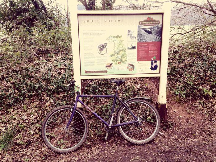 Taking a break on The Strawberry Line Somerset Axbridge Bike StrawberryLine Railway Disusedrailways