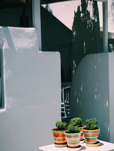 Colors Built Structure No People Architecture Day Plant Sunlight Potted Plant Nature Table Building Exterior Wall - Building Feature Outdoors Food And Drink Shadow Food Seat Building Wellbeing Growth Freshness