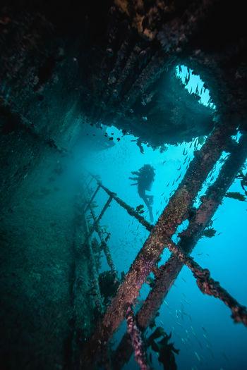 Scuba diver undersea