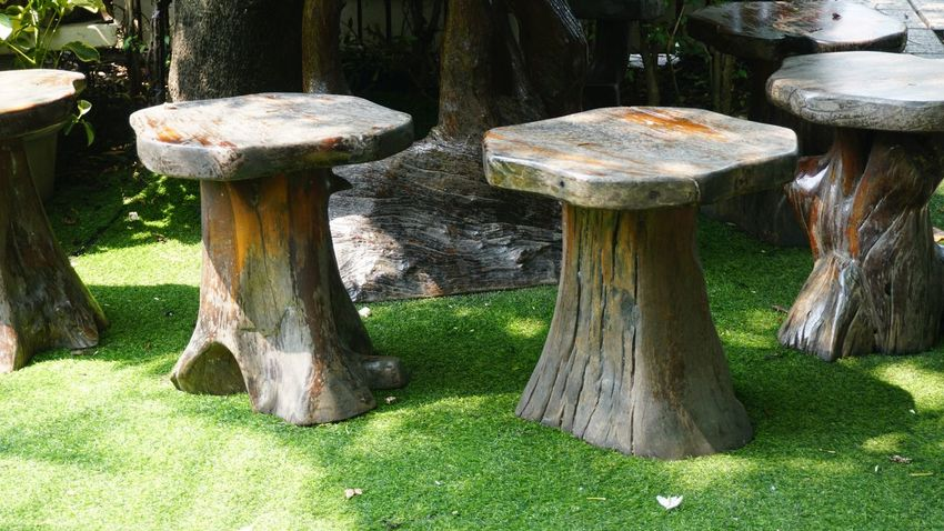 Wooden chairs on green grass in garden Outfoor Garden Resting Green Grass Wooden Chairs No People Day Nature Outdoors Grass Tranquility Growth Tree Beauty In Nature