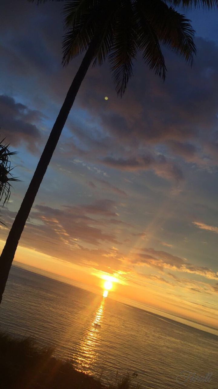sunset, sea, scenics, beauty in nature, nature, water, tranquil scene, tranquility, sun, horizon over water, sky, silhouette, idyllic, palm tree, outdoors, no people, cloud - sky, beach, tree, day
