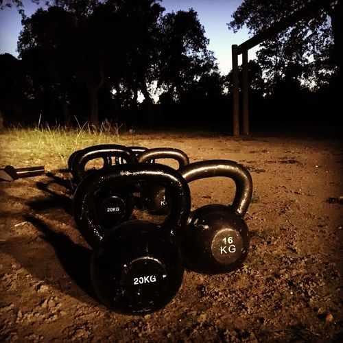 Fitness Kettelbell Crossfit Tree Plant Nature Sunlight Day Land Outdoors