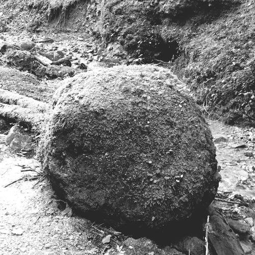 round Rock Klamm Und Wasser Austria ❤ Ball Rocks Rock - Object Day Outdoors No People Nature Rough Beauty In Nature