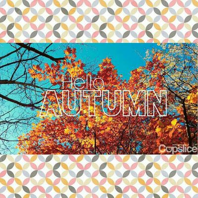 Autumn welcomes a time of beauty and style Autumn Autumn Colors Autumn Leaves Nature Piclab Seasons EyeEm Best Edits Snapseed
