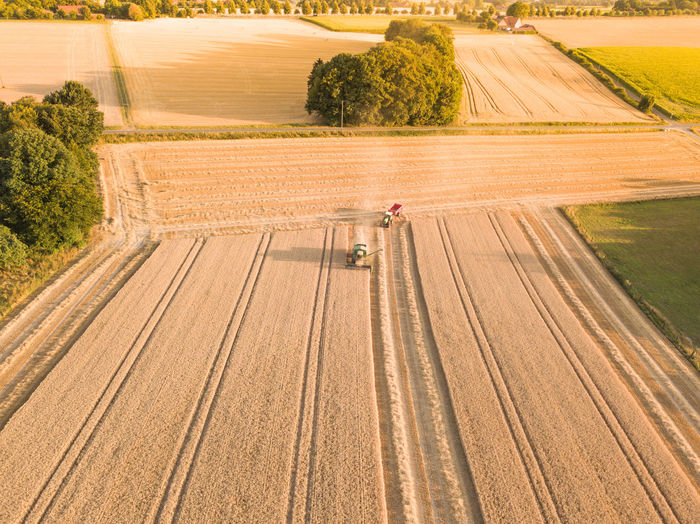 Aerial View Of Combine Harvesters On Agriculture Landscape