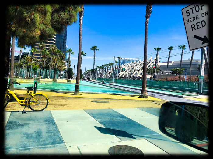 Downtown Adventure. Downtown SD SD Architecture Bicycle Building Exterior Car City Day Land Vehicle Mode Of Transportation Motor Vehicle Nature No People Outdoors Palm Tree Plant Road San Diego Convention Center Sign Sky Street Transfer Print Transportation Tree Tropical Climate Adventures In The City The Street Photographer - 2018 EyeEm Awards The Great Outdoors - 2018 EyeEm Awards