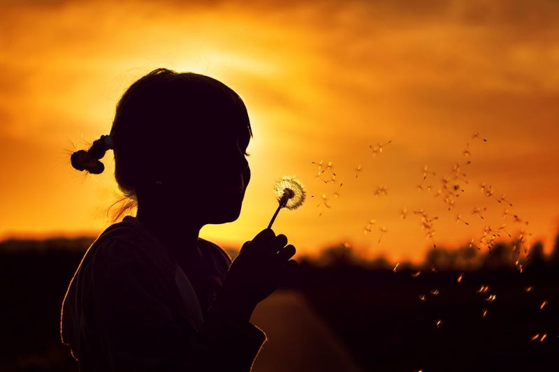 Side view of silhouette girl blowing dandelion seed against sky during sunset