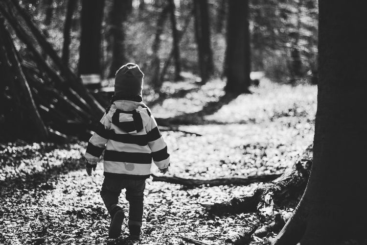 Rear View Of Boy Walking In Forest