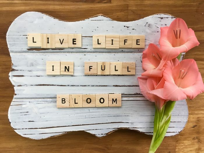 LIVE LIFE IN