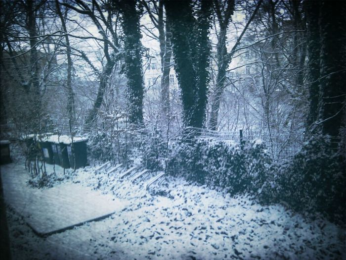 Schon wieder Schnee, Orrr.