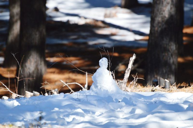 Low angle shot snowman in the woods