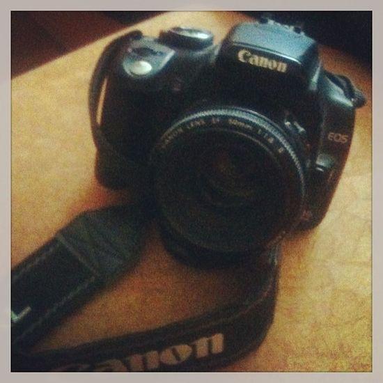 Старик Canon EOS 350  люблю его)