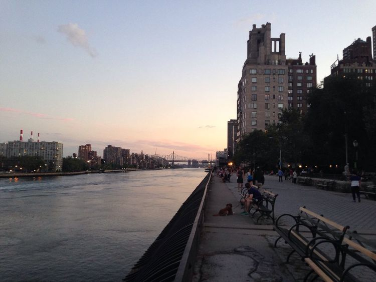 Walk in Carl Schurz Park, NY New York No Filter New York City Summertime Carl Schurz Park Walk Hudson River East River, NYC East River Spike Lee 25th Hour