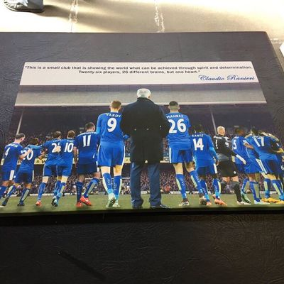 #LCFC #FOXES #BACKINGTHEBLUES #LEICESTER Canvas Available Now! Few Sizes Message Me To Order!