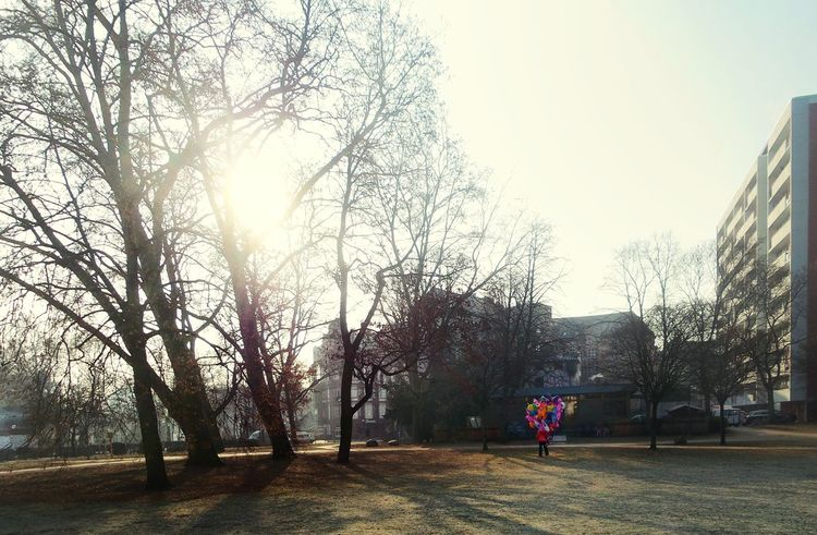 Balloon Seller On The Way To Work One Man Walking City Park Tree Sunlight Through The Trees Empty Park Real People Morning Light Tranquil Scene Story Behind The Picture Sunny Winter Day Cold Weather Frankfurt Am Main Germany🇩🇪 Adapted To The City TCPM The Street Photographer - 2018 EyeEm Awards