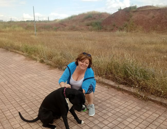High Angle View Of Mature Woman Petting Dog While Crouching On Footpath