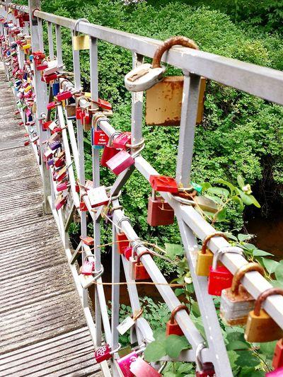 Bridge Bridge Over Water Bridge View Brückengeländer Schlösser Schloss An Brückengeländer Schlösser An Brückengeländer Ladyphotographerofthemonth Liebesschlösser Love Locks Love Locks Bridge Love Locks On Bridge Railings